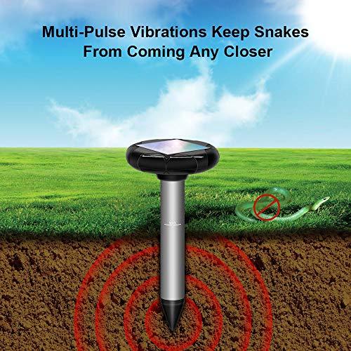 Répulsif à énergie solaire, serpent